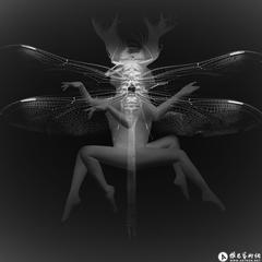 Metamorphosis No. 13, Huang Ying