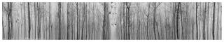 Existential Emptiness, No. 3, Cui Xiuwen