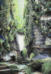 Waldschlucht, Wieland Payer