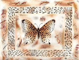 20130208085001-butterfly001