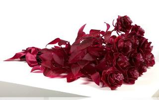 A Dozen Roses, Keith Edmier