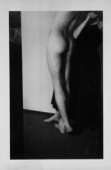 The Model, Barbara Bloom