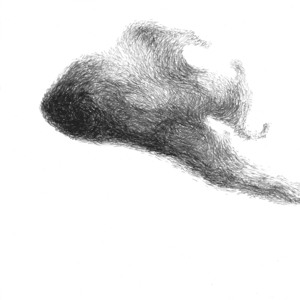 20130209040127-haiku_top_swarm
