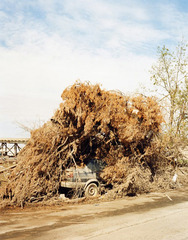 Hurricaine Katrina, Lower ninth ward, New Orleans,