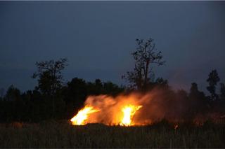 """""""The Fire""""  , Apichatpong Weerasethakul"""