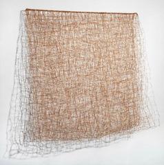 Light, Nancy Koenigsberg