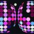 20130219010355-everybodylovessatnight_2012_web