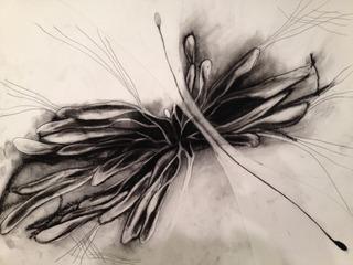 Drawing 29, Becky Chmielewski