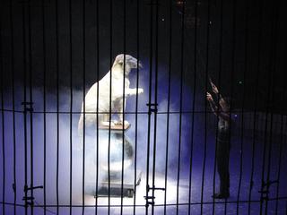 Cirque d-Hiver, Paris, Louise Weinberg