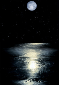 20130224225234-ocean123