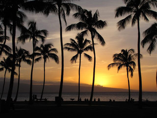 Evening in Maui, Linda Hauser