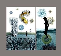 Transitory Shores & Biomorphic II, Sonia Mehra Chawla