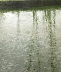 Arbres au bord du canal, Benoit Trimborn