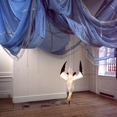 Parachute , Dorothy Cross