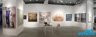 Art Wynwood 2013,