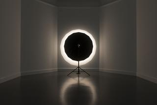 Temporary Projections  , David Maljkovic