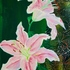 20130310213406-pink_lilies_on_green