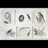 20130312232404-jonas_drawing_installation__2_