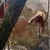20130319170418-hanging_lg