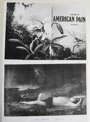 American Pain Collage, Wineke Gartz