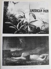 American Pain Collage, Wineke Gartz