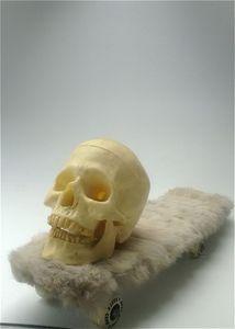 20130320155556-mxf_skull_skate