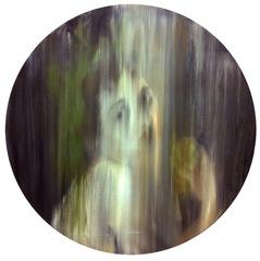 A Portrait of Self Destruction, Michal Cole