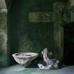 La materia delle forme, Luca Vecoli