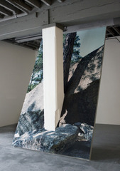 Ghost of a Tree,  Installation view at Bemis Center for Contemporary Art, Omaha, NE., Letha Wilson