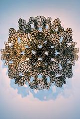 Kaleidoscope, Allison Svoboda