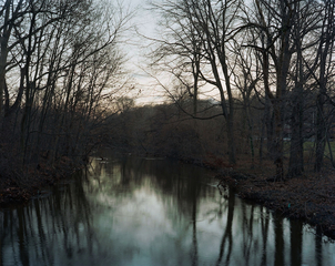 Bronxvile, Nicholas Pollack