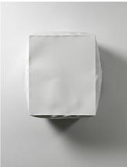 Burst (White), Angela De La Cruz