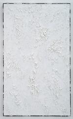 UNTITLED (WHITE TEXTURE DIPTYCH I) , Roman Liška