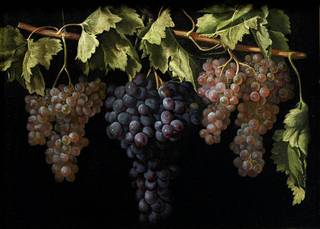 Still Life with Four Bunches of Grapes, Juan Fernández el Labrador