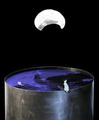20130402003805-lashai_farideh_catching-the-moon-still-_2012_64x70cm_edition-of-7_hires-jpg