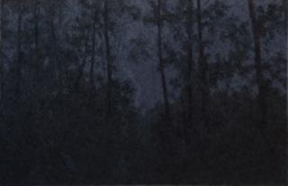 Shadow of Light - 2 , Pan Jian