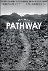 Animal Pathway, Chile , Hamish Fulton