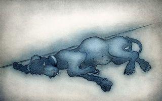 Bluebell, Naomi Alexander