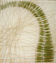 Bending Fern,Karen Sikie