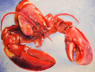 The Happy Little Lobster,Mary Kay Wilson
