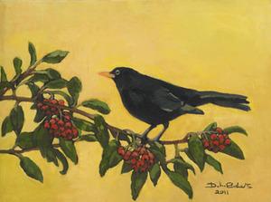 20130413101306-black_bird