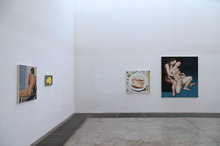 Installation View, Wang Xingjie