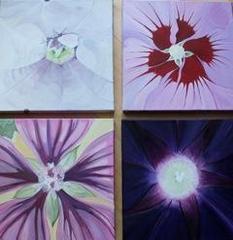Violet quartet, Angelika Lialios