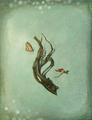 Gulffritillary, Susan McDonnell