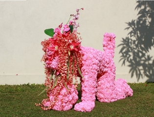 Flower Generation , Eko Nugroho