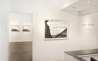Installation View, Shelly Malkin