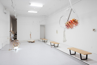 Installation view, Rebecca Ripple