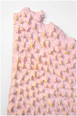 Texture 3 & 4, Mika Rottenberg