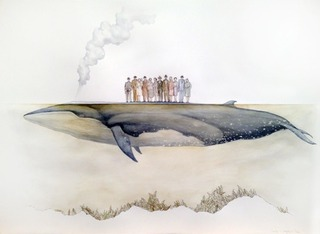 Bryde\'s Whale, Paul Morstad