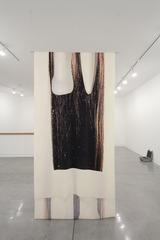 Body Fluids , Alice Channer